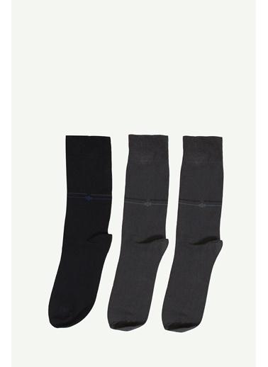 Collezione Çorap Renkli